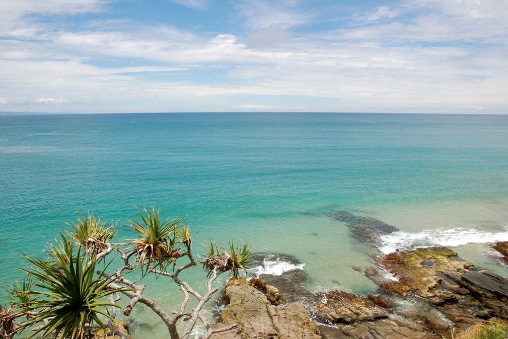 Ormus from the pristine Sunshine Coast | Ormus | Ormus